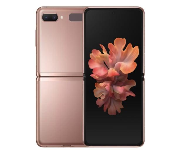 Samsung Galaxy Z Flip 5G SM-F707F Brown - 587877 - zdjęcie