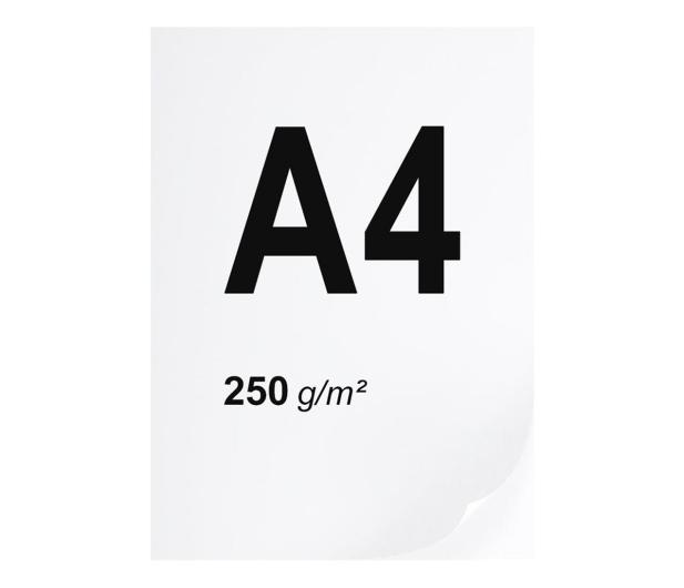A4 ryza 125 szt. 250g/m - 666218 - zdjęcie
