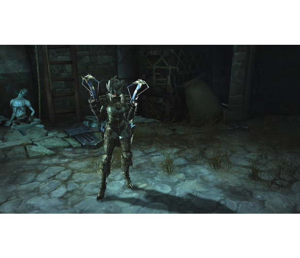 CD Projekt Diablo 3 Ultimate Evil Edition + Reaper of Souls - 206520 - zdjęcie 10