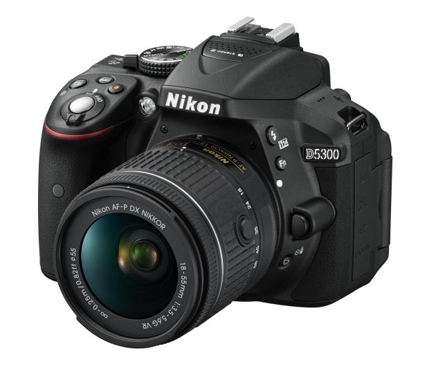 Nikon D5300 + AF-P 18-55 VR  - 289173 - zdjęcie
