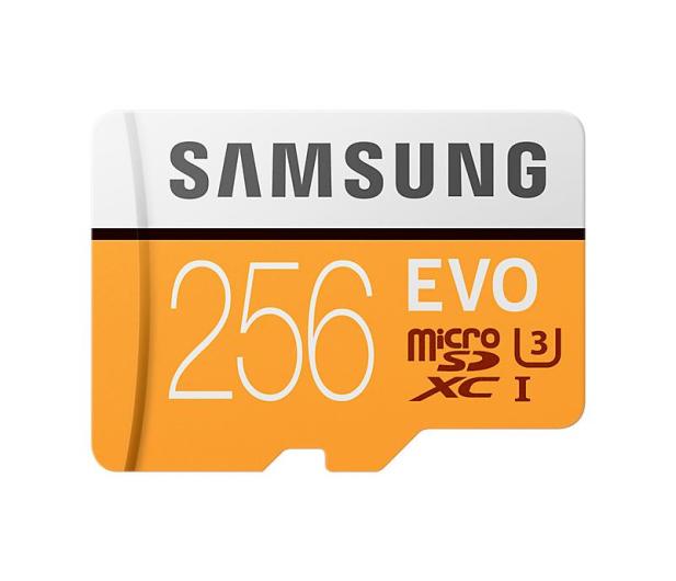 Samsung 256GB microSDXC Evo zapis 90MB/s odczyt 100MB/s - 360781 - zdjęcie