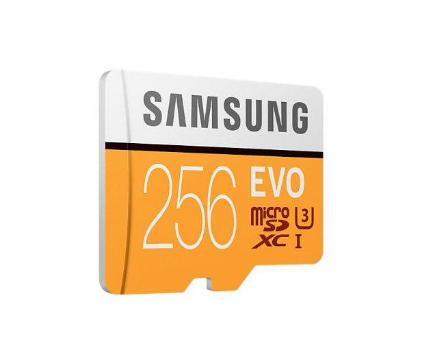 Samsung 256GB microSDXC Evo zapis 90MB/s odczyt 100MB/s - 360781 - zdjęcie 2