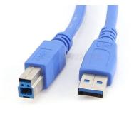 Gembird Kabel USB - USB-B 0,5m (do drukarki) - 182298 - zdjęcie 5