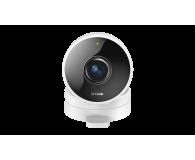D-Link DCS-8100LH Mini HD LED IR (dzień/noc) panoramiczna - 397160 - zdjęcie 1