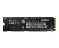 Samsung 1TB 1,8'' Seria 960 EVO M.2 2280 NVMe - 339261 - zdjęcie 1