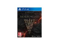 CENEGA The Elder Scrolls Online: Morrowind  - 366720 - zdjęcie 1
