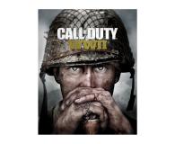 PC Call of Duty: World War II ESD Steam - 463598 - zdjęcie 1