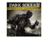 PC Dark Souls 3 (Deluxe Edition) ESD Steam - 463628 - zdjęcie 1