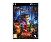 Paradox Development Studio Magicka ESD Steam - 466620 - zdjęcie 1