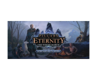 PC Pillars of Eternity:The White March Expansion Pass - 466792 - zdjęcie 1