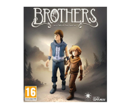 PC Brothers: A Tale of Two Sons ESD Steam - 465665 - zdjęcie 1