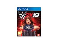 CENEGA WWE 2K19 - 435886 - zdjęcie 1
