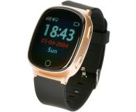 Garett GPS 3 złoty - 442853 - zdjęcie 1