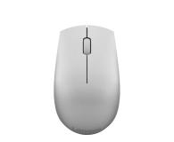 Lenovo 520 Wireless Mouse (Platinum) - 522358 - zdjęcie 1
