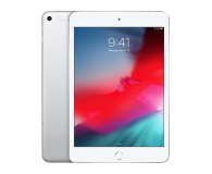 Apple iPad mini 256GB LTE Silver  - 486992 - zdjęcie 1