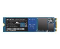 WD 250GB M.2 PCIe NVMe Blue SN500 - 486495 - zdjęcie 1