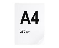 A4 ryza 125 szt. 250g/m - 494966 - zdjęcie 1