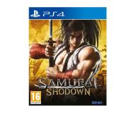CDP Samurai Shodown - 502709 - zdjęcie 1