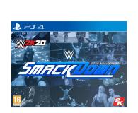 CENEGA WWE 2K20 Collector's Edition - 510767 - zdjęcie 1