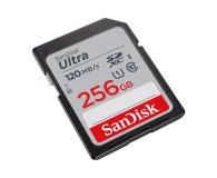 SanDisk 256GB SDXC Ultra 120MB/s C10 UHS-I - 609139 - zdjęcie 2
