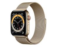 Apple Watch 6 44/Gold Steel/Gold Loop LTE - 609934 - zdjęcie 1