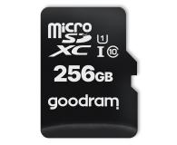 GOODRAM 256GB microSDXC 100MB/s C10 UHS-I U1 - 601413 - zdjęcie 1