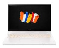 Acer ConceptD 3 i7-10750H/16GB/1TB/W10P GTX1650 Touch - 611167 - zdjęcie 3
