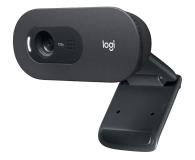 Logitech C505 HD - 609954 - zdjęcie 1