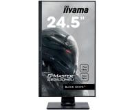 iiyama G-Master GB2530HSU Black Hawk  - 430746 - zdjęcie 3