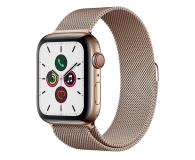 Apple Watch 5 44/Gold Steel/Gold Loop LTE - 564119 - zdjęcie 1