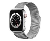 Apple Watch 6 44/Silver Steel/Silver Loop LTE - 593155 - zdjęcie 1