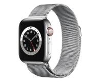 Apple Watch 6 40/Silver Steel/Silver Loop LTE - 593143 - zdjęcie 1