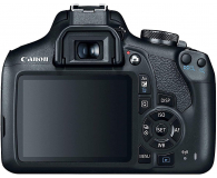 Canon EOS 2000D+ EF-S 18-55mm F4-5.6IS STM - 651698 - zdjęcie 3