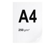 A4 ryza 125 szt. 250g/m - 666218 - zdjęcie 1