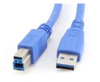 Gembird Kabel USB - USB-B 0,5m (do drukarki) - 182298 - zdjęcie 1