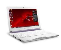 Packard Bell DOTS-C N2600/2GB/320/7SE fioletowy - 150947 - zdjęcie 6