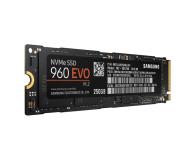 Samsung 250GB 1,8'' Seria 960 EVO M.2 2280 NVMe - 346493 - zdjęcie 3