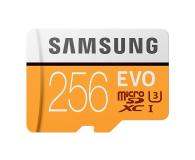 Samsung 256GB microSDXC Evo zapis 90MB/s odczyt 100MB/s - 360781 - zdjęcie 1