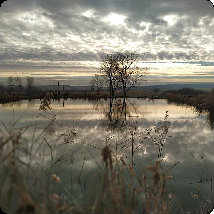zdjęcie krajobrazowe Xiaomi Mi 8 Lite
