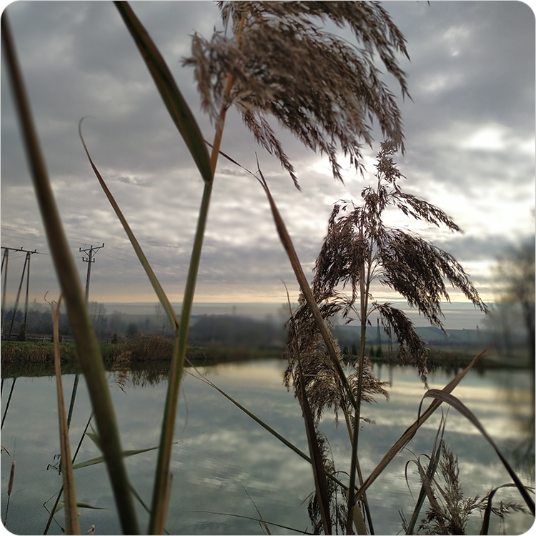 zdjęcie krajobrazowe z głębią Xiaomi Mi 8 Lite